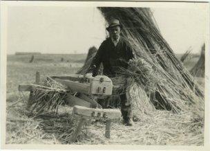 historical-hemp